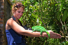 Chameleon tourist. Beautiful woman exploring and having fun with the wildlife in Madagascar stock photography