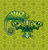 Chameleon Vector art on floral design with background Stock Photography