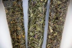 Chamerions-angustifolium, Hypericum, Dracocephalum Stockbild