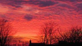 Chaminé e árvores mostradas em silhueta contra um céu vermelho e alaranjado impetuoso Imagem de Stock Royalty Free