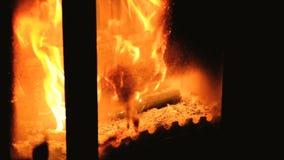 Chaminé quente completamente da madeira e do fogo Fogo ardente acolhedor morno em um fim da chaminé do tijolo acima filme