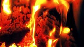 Chaminé quente completamente da madeira e o fogo, lenha ardente e carvões video estoque