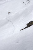 Chamois et empreintes de pas dans la neige Images libres de droits