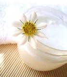 chamomile κρέμα Στοκ εικόνες με δικαίωμα ελεύθερης χρήσης