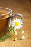 chamomile τσάι Στοκ εικόνα με δικαίωμα ελεύθερης χρήσης