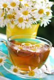 chamomile τσάι Στοκ φωτογραφία με δικαίωμα ελεύθερης χρήσης
