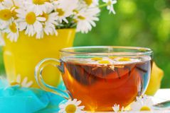 chamomile τσάι Στοκ εικόνες με δικαίωμα ελεύθερης χρήσης