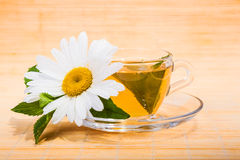 chamomile φρέσκο τσάι Στοκ φωτογραφίες με δικαίωμα ελεύθερης χρήσης