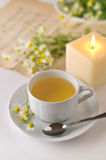 Chamomile 5 Royalty Free Stock Images
