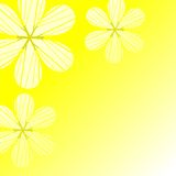 Chamomile abstract. Daisy on green background,vector illustration Stock Photo