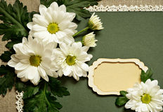 Chamomile arrangement and a card Stock Photography