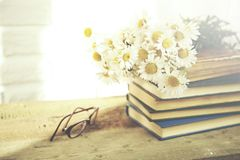 Chamomile and book. Chamomile flowers and  glaases on book on table on brick wall background Royalty Free Stock Photography