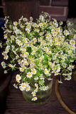 Chamomile bouquet in  glass vase Royalty Free Stock Photos