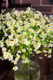 Chamomile bouquet in  glass vase. On the wood table. Selective focus. with bokeh Royalty Free Stock Image
