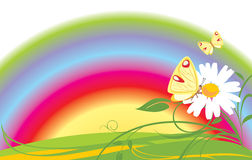 Chamomile, Butterflies And Rainbow Stock Photo