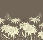 Chamomile and butterflies Royalty Free Stock Photo