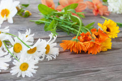 Chamomile, calendula i inni ogródów kwiaty dla bukieta na drewnianym stole, Zdjęcia Stock