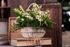 Chamomile decor composition with books and box on the brown wood table. Chamomile decor composition with books and box on the old brown wood table. Selective Royalty Free Stock Photography