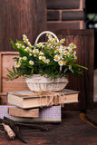 Chamomile decor composition with books and box on. The old brown wood table. Selective focus with bokeh Stock Image
