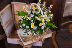 Chamomile decor composition with books and box on. The old brown wood table. Selective focus with bokeh Royalty Free Stock Photography