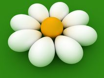 Chamomile of Easter Egg Royalty Free Stock Images