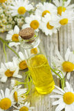 Chamomile essence and flowers Stock Images