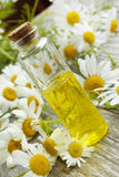 Chamomile essence and flowers Stock Photo