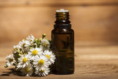 Chamomile Essential Oil. And bouquet of chamomile flowers on wooden background Stock Photos