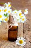 Chamomile essential oil Royalty Free Stock Photos