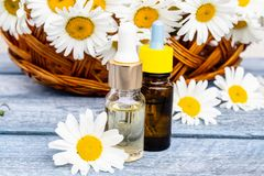 Chamomile essential oil in a glass bottle stands on wooden boards near the basket with chamomile flowers stock photography