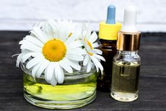 Chamomile essential oil in a glass jar close-up on a table with daisies and a bottle of oil royalty free stock image