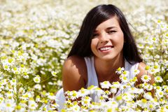 In chamomile field Royalty Free Stock Image