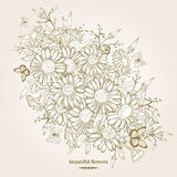 chamomile floral ανασκόπησης Στοκ φωτογραφία με δικαίωμα ελεύθερης χρήσης