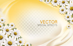 Chamomile flower background royalty free illustration