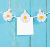 Chamomile flower clothespins with blank paper on blue wood background Stock Photos