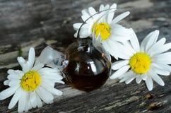 Chamomile flower essential oil. Herbal medicine. Chamomile flower essential oil. Naturopathy. Herbal medicine stock photos