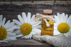 Chamomile flower essential oil. Naturopathy. Herbal medicine stock image