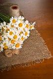 Chamomile flower on napkin Stock Images