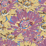 Chamomile flower seamless pattern, floral vector background. Purple, yellow and multicolor flowers with petals on the blue backdro Stock Images