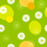 Chamomile flower seamless pattern graphic art green yellow white color illustration Royalty Free Stock Image