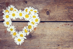 Chamomile flowers as a shape of heart on wooden surface Royalty Free Stock Image