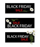 Chamomile Flowers on Black Friday Sale Banner Royalty Free Stock Image