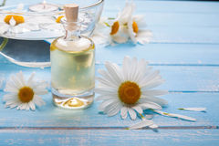 Chamomile flowers and bottle with aroma oil Royalty Free Stock Photography