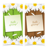 Chamomile flowers frame composition. Stock Photography