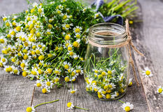 Chamomile flowers in a glass jar on a wooden background Royalty Free Stock Photos