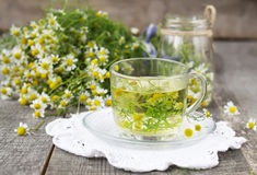 Chamomile flowers in a glass jar on a wooden background Stock Images
