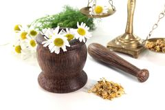 Chamomile flowers with mortar and scales Stock Photography