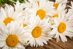 Chamomile flowers on wooden table Stock Photo
