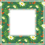 Chamomile green border. Abstract border chamomile pattern on a green background Royalty Free Stock Image