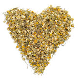 Chamomile heart Royalty Free Stock Photo